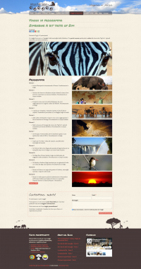 sito-internet-responsive-african-path3.png