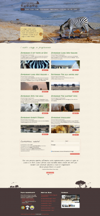 sito-internet-responsive-african-path.png